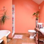 bathroom barn conversion for sale in shropshire